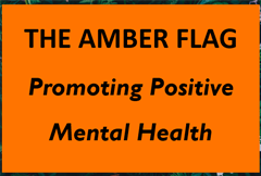 Amber Flag - Staff Video