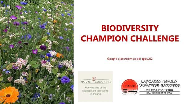 Biodiversity Champions Challenge Powerpoint