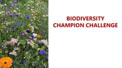 Biodiversity Champions Challenge: Getting Involved.
